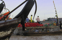 The Awkward Person's Guide to the Mekong Delta